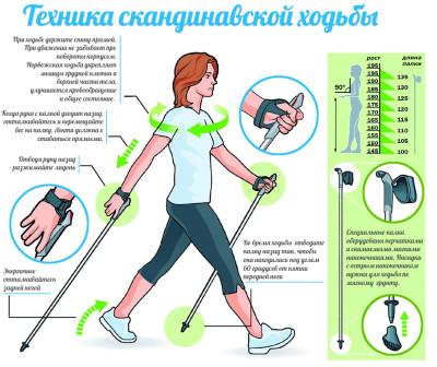 скандинавская ходьба как правильно ходить