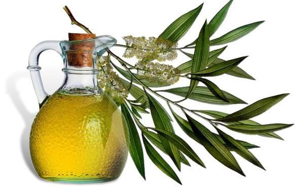 чайное дерево масло