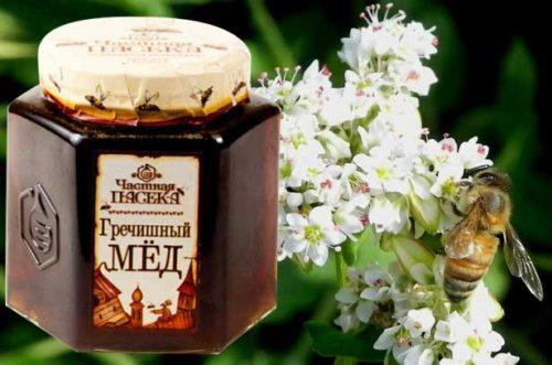 Гречишный мёд: природный источник витаминов и минералов