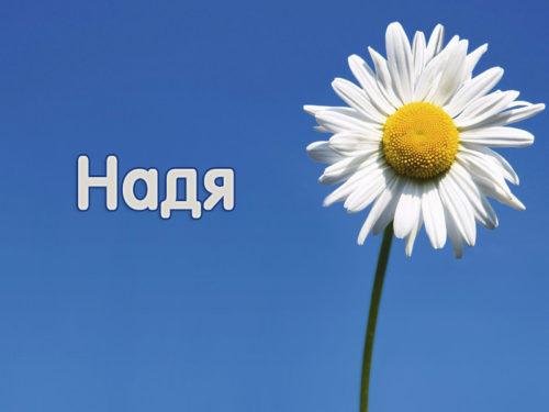 Имя Надежда (Надя) — происхождение, значение, судьба