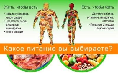 Питание для похудения — меню, рацион