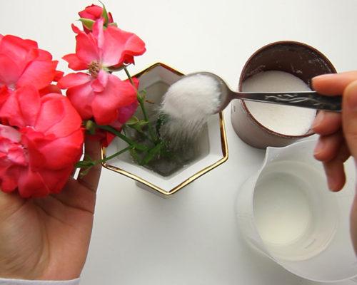 Как сохранить срезанные цветы1